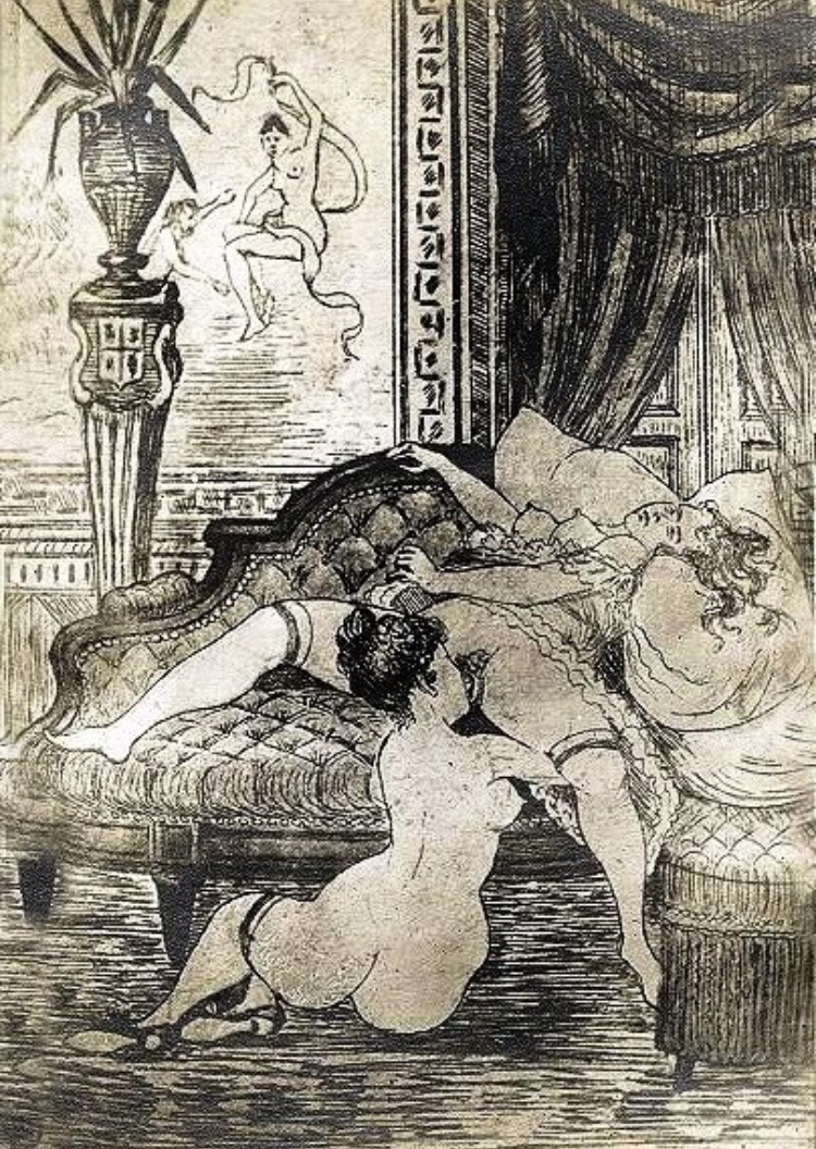 Illustration for La Roman de Violette (1870) - Frédillo